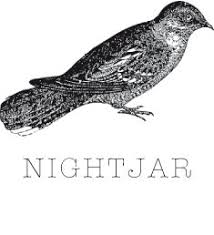 Bar Nightjar